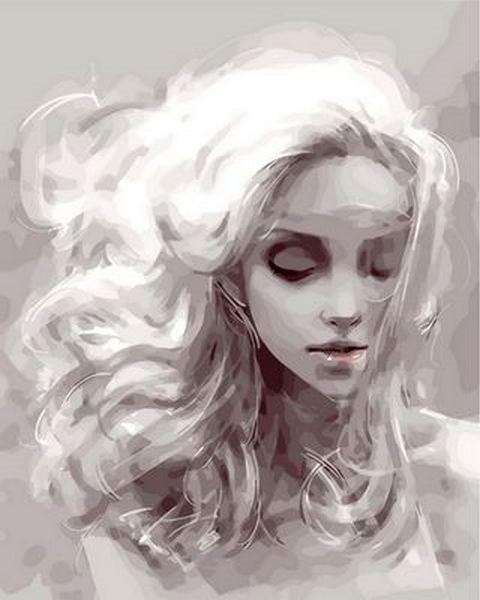 Картины по номерам 40×50 см. Девушка из снов