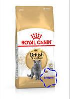 Royal Canin сухий корм для дорослих котів породи британська короткошерста віком від 12 місяців.