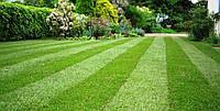Аэрация / скарификация газона