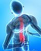 Мануальная терапия и остеопатия