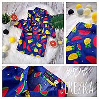 """Блуза """"ZARA"""" c открытыми плечами разные цвета"""