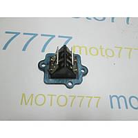 Лепестки Suzuki ZZ Inch Up Sport- Suzuki Lets 2 new