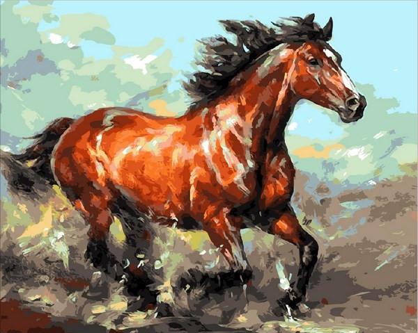 Картины по номерам 40×50 см. Наперегонки с ветром