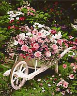 Картины по номерам 40×50 см. Розовый куст
