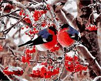 Картины по номерам 40×50 см. Снегири и рябина