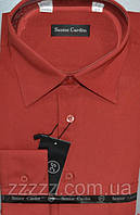 Чоловічі сорочки теракотові