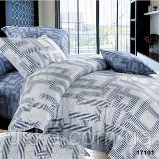 Двухспальное постельное белье Вилюта 17101