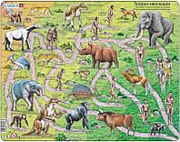 Пазл рамка-вкладыш Lasren - Теория эволюции