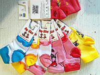 """Носки детские для малышей ТМ """"Африка"""" (арт.310К)"""