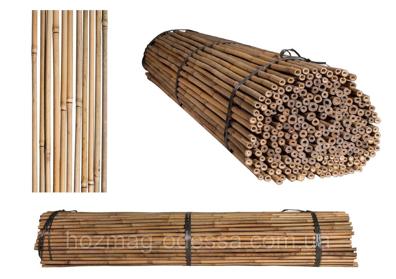 Бамбуковый ствол, опора диам.16-18мм, L 2,1м