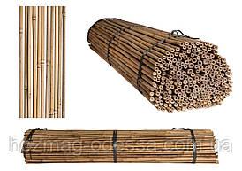 Бамбуковая опора, ствол диам.12-14мм, L 1,5м