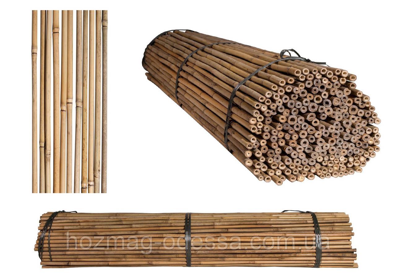 Бамбуковая опора, диам.16-18мм, L 2,1м