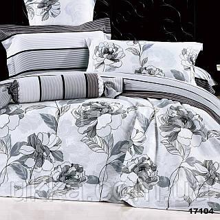 Двуспальное постельное белье Вилюта 17104