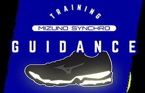 4431f870 Mizuno Synchro SL 2 j1ge1728-01 - беговые кроссовки - купить на ...