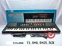 """RUS Орган XTS-4900/146176R """"Синтезатор"""" сеть,микрофон кор.71*8,5*25,5 ш.к./8/"""