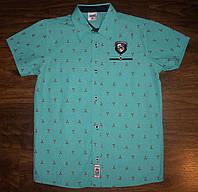 Рубашка (шведка) для мальчиков 134 Турция
