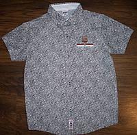 Рубашка (шведка) для мальчиков 110 Турция