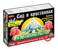 """0262 Набір для дослідів """"Сад в кристалах"""" великий 12138011Р(189)"""