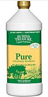 Buried Treasure, 70+ Растительных минералов, чистые коллоидные минералы, 946 мл