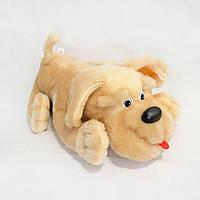 Мягкая игрушка Собака Пуфик мини