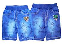 Шорты джинсовые для мальчика, размеры 98-128, GRACE, арт. В-50483