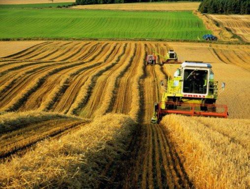 Вітчизняна сільгосптехніка в Україні повинна на 60% замінити імпортну