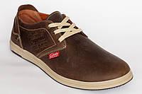 Кожанные демисезонные мужские  кроссовки Clarks коричневого цвета