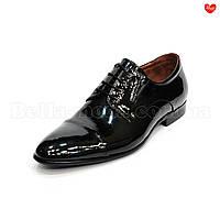 Мужские чёрные лаковые модельные туфли кожа