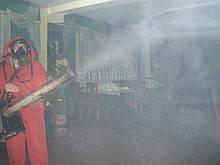 Служба уничтожения тараканов