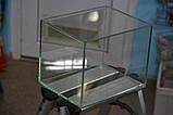 Террариум 10л прямоугольный, фото 2