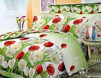 Постельный комплект Тюльпаны Евро размер