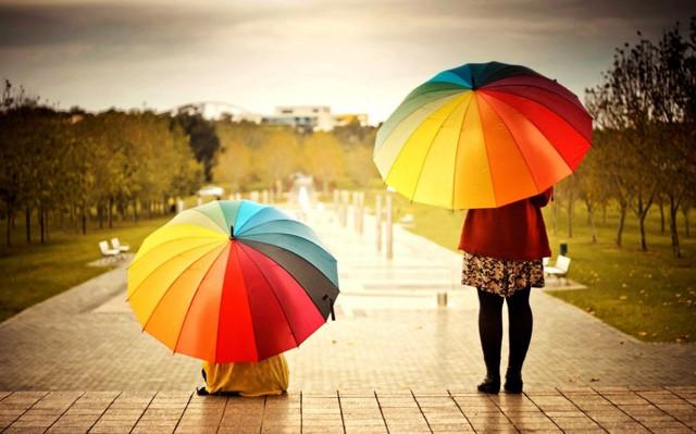 Зонты (мужские женские детские)