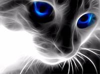 Алмазная вышивка без коробки MyArt Черно-белый кот 40 х 50 см (арт. MA474)