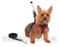 Поводок Comfy Control Harness для собак