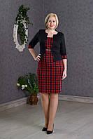 Деловое женское платье-костюм р.48-54 красная клетка V276-2