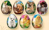 """Термонаклейки на пасхальные яйца """"Пасхальные зверята"""""""