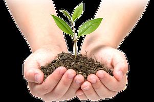 Средства для роста растений