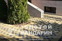 Тротуарная плитка Квадрат 100*100*60