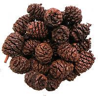 Соплодия ольхи (ольховые шишки) 100 грамм