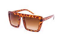 Женские солнцезащитные очки в пластсмасовой оправе