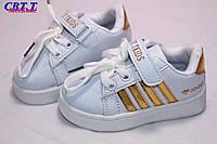 Детская спортивная обувь кеды для мальчиков от фирмы CBT.T A66-1 (12пар 20-25)