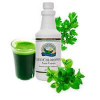 Хлорофилл Жидкий  Liquid Chlorophyll  - выводит токсины из организма человека