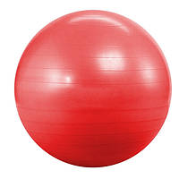 Фитбол Landfit Fitness Ball 55cm with Pump для дома и спортзала, Киев