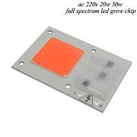 Светодиодный модуль COB LED 15W AC220 для растений