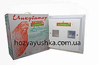 Инкубатор Наседка ИБ-100 ручной переворот, аналоговый терморегулятор