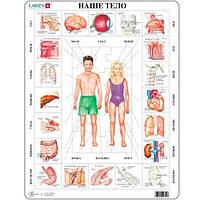 Пазл рамка-вкладыш Наше тело Lasren серия Макси (OB1)