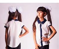 Блуза школьная белая с синим воротником и вставкой