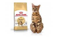 Royal Canin BENGAL ADULT Сухой корм для взрослых бенгальских кошек старше 12 месяцев, 2кг