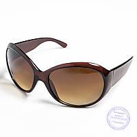 Распродажа женских солнечных очков оптом - Коричневые - D76