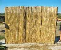 Камышовый забор,1000х6000мм